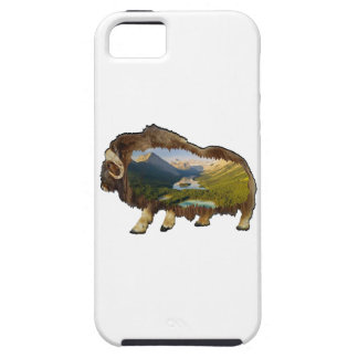 The Picture Within iPhone 5 Case