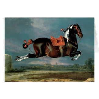 The piebald horse 'Cehero' rearing Card