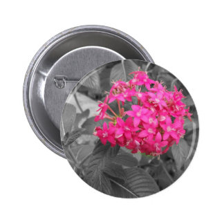 The Pink Flower Pinback Buttons