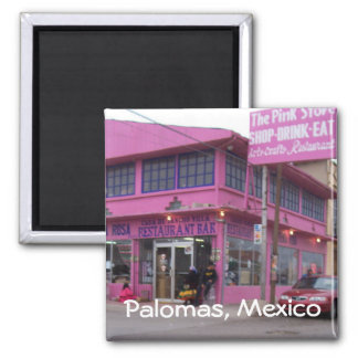The Pink Store Magnet