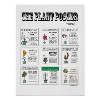 The Plant Poster - Little Known Plants by Harrop