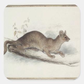 The Polecat, 19th century Sticker