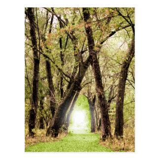 """The Portal"" Photography Postcard"