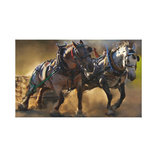 The Power of Two Canvas Print