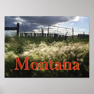 The Prairie Grasses of Montana Custom Print