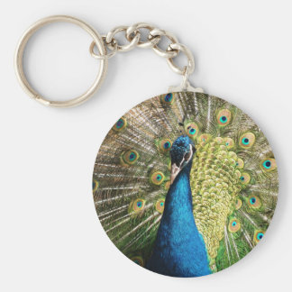 The Pretty Peacock Keychain