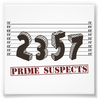 The Prime Number Suspects Photo Print