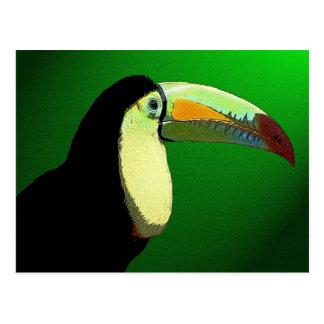 The Prismatic Toucan Postcard
