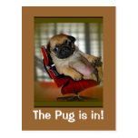 The Pug is in! Postcards