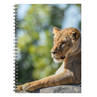 The Queen On Her Throne Notebook