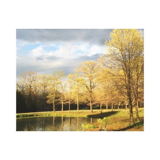 The Quiet Pond Canvas Print