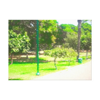 The Raanana Park 9 Canvas Print
