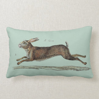 The Racing Hare at Easter Pillows
