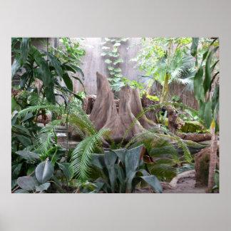 The Rainforest Poster