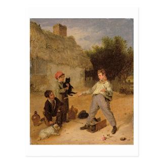 The Rat Trap (oil on panel) Postcard
