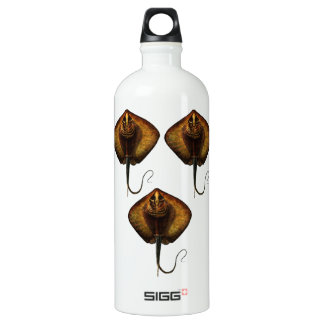 THE RAYS WAVES WATER BOTTLE