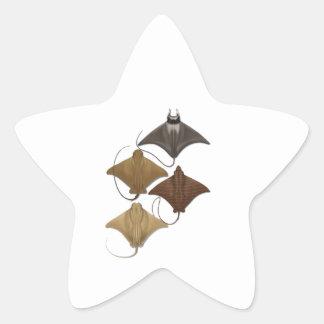 THE RAYS WAYS STAR STICKER