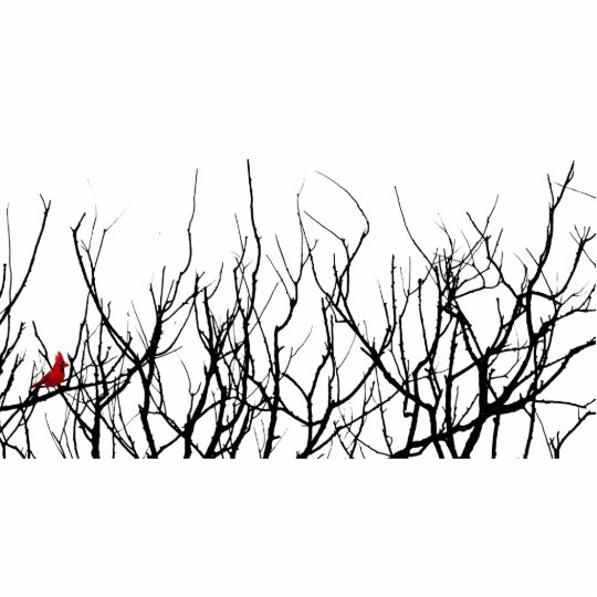 The Red Bird by Leslie Peppers Standing Photo Sculpture