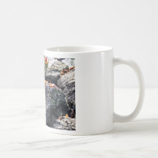 The Red Leaf Coffee Mug