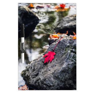 The Red Leaf Dry Erase Board