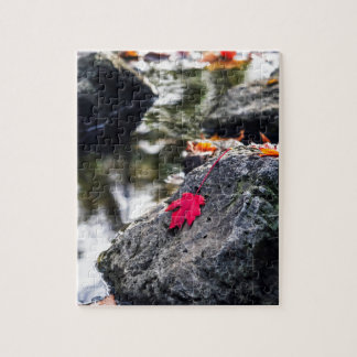 The Red Leaf Jigsaw Puzzle
