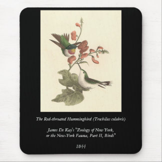 The Red-throated Hummingbird (Trochilus colubris) Mouse Pad