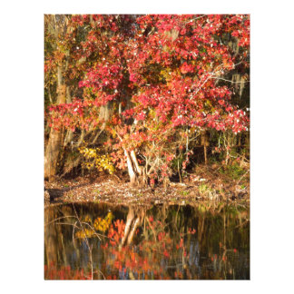 The Red Tree at Sunset Custom Letterhead