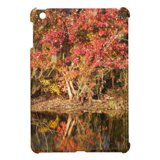 The Red Tree at Sunset iPad Mini Case