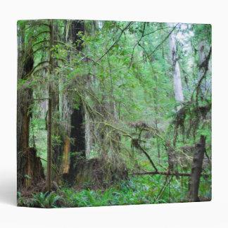 The Redwoods - Sequoia Binders