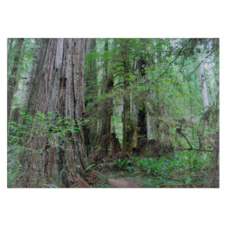 The Redwoods - Sequoia Boards