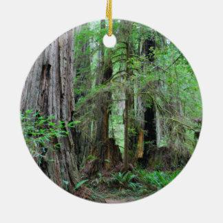 The Redwoods - Sequoia Ceramic Ornament