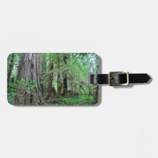 The Redwoods - Sequoia Luggage Tag