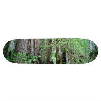 The Redwoods - Sequoia Skate Board Deck