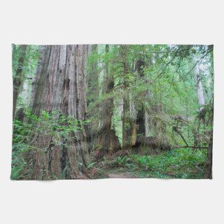 The Redwoods - Sequoia Towels