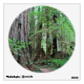 The Redwoods - Sequoia Wall Decal