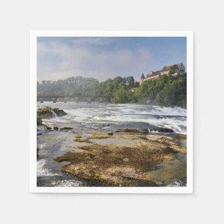 The Rhine Falls Paper Napkins