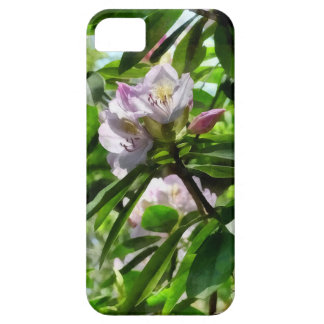 The Rhododendrons Are In Bloom iPhone 5 Cover