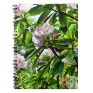 The Rhododendrons Are In Bloom Spiral Notebook