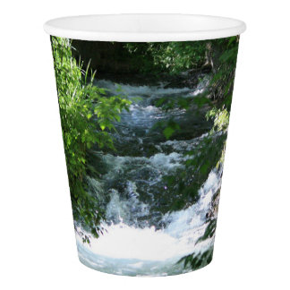 The River Paper Cup