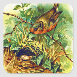 The Robin's Nest Vintage Illustration Square Sticker