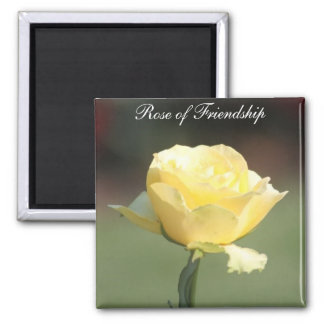 The Rose of Friendship Magnet