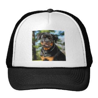 The Rottweiler Trucker Hat