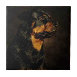 The Rotty Tile