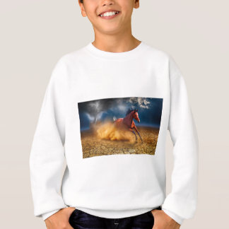 The Runaway Sweatshirt
