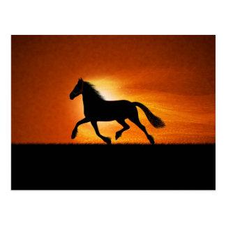 The Running Horse Postcard