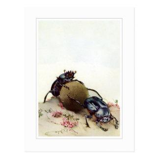 The Sacred Beetle Postcards
