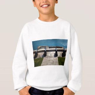 The saluting battery sweatshirt