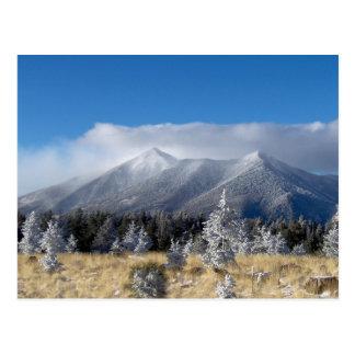 The San Francisco Peaks Of Flagstaff Freshly Coate Postcard
