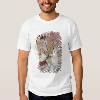 The Sarcophagus of the Amazons Shirt