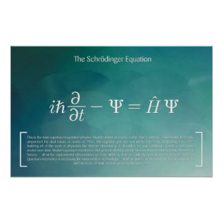 The Schrödinger Equation - Math Poster